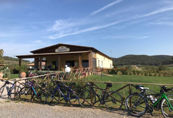 Italy bike tour - Tuscan countryside
