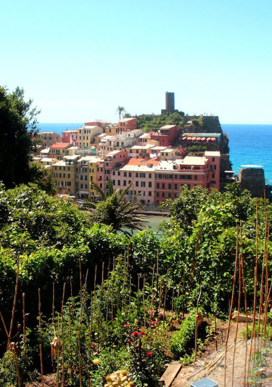 cinque terre from portofino private tour